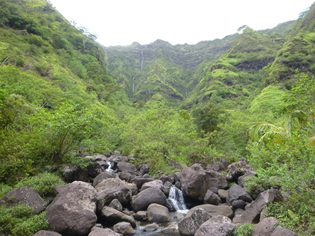 three forks of Makaleha Stream
