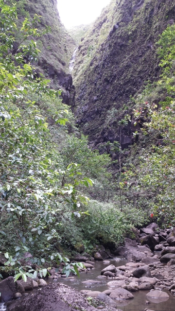 sunlit gorge