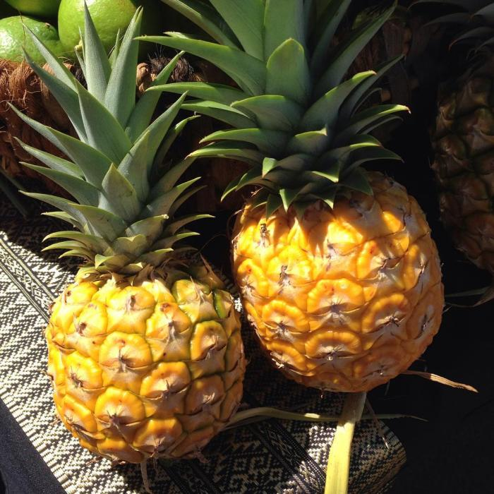 """Small, """"personal-size"""" pineapples. The smaller one is softball size."""