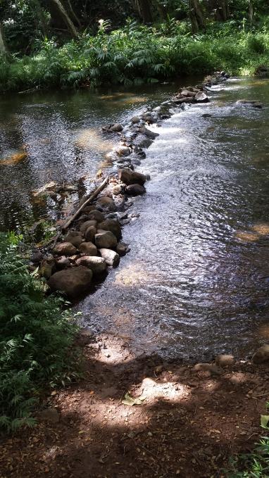 low stone dam