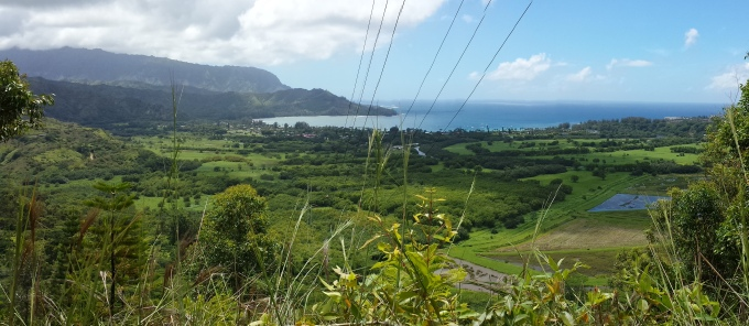 Makana to Princeville from the powerline.