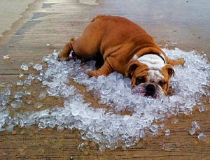 Air-conditioning-keeping-cool-ice