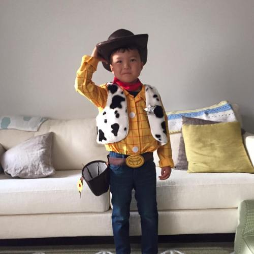 Sheriff Woody!