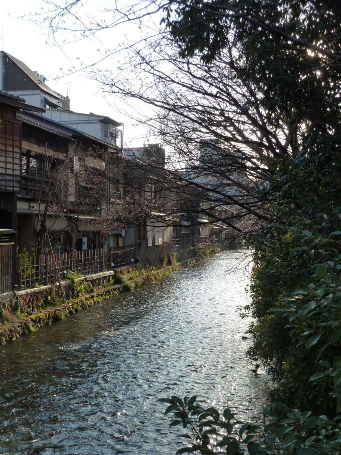 Teahouses line Shirakawa in Gion