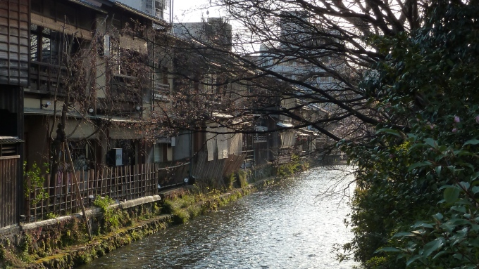 Teahouses line Shirakawa in Gion