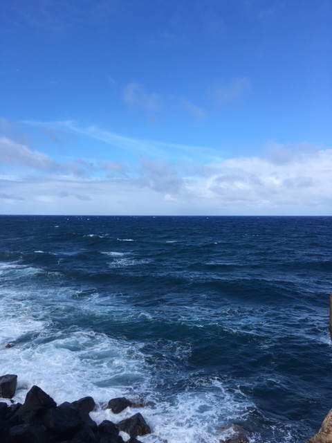 The view from the Pineapple Dump - perfect for whale watching in the winter