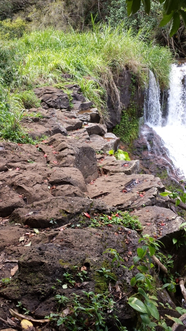 lower Ho'opi'i Falls