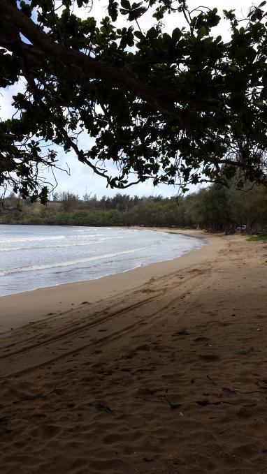 Sandy Beach, Light Surf