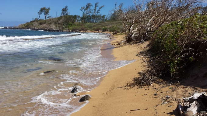 Pristine Section of Nukoli'i Beach
