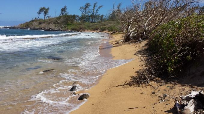 Pristine Section of Nukoli'i Beach