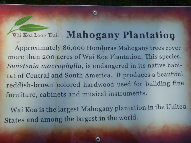 Wai Koa Plantation