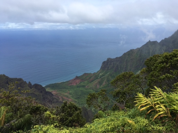 Kalalau Viewpoint, overlooking the Kalalau Valley and Napali Coast of Kaua'i
