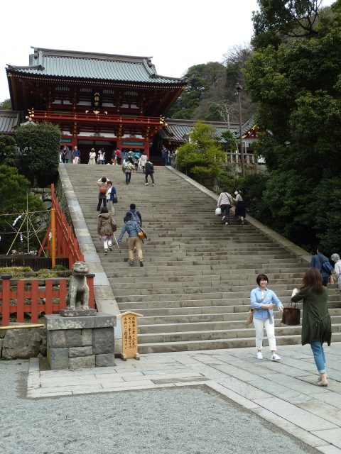 The main shrine building at Hachimangu