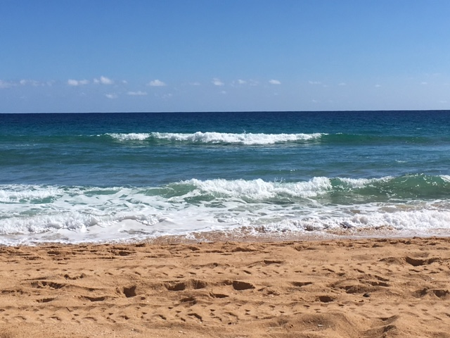 The view from my beach chair on Tuesday