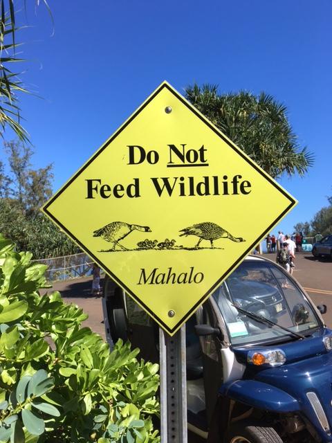 Do NOT Feed Wildlife, Mahalo