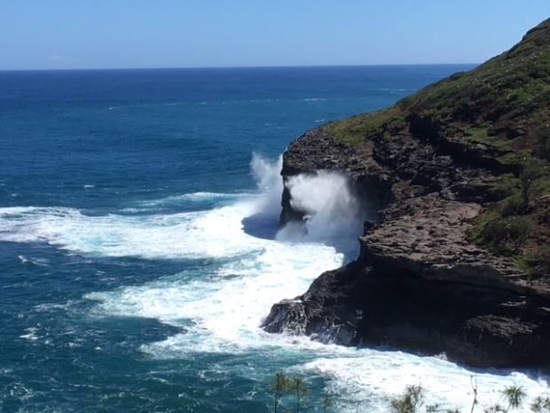Pounding Surf, Cliffs, Red-footed Boobies, Nests