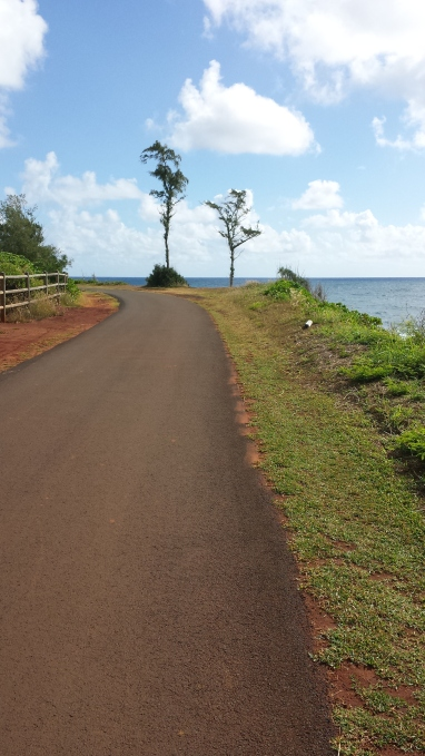 Pathway north of Kealia Beach