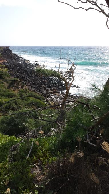 Pineapple Dump at the Horizon