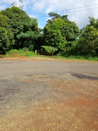 Trail gate at Olohena & Waipouli Intersection