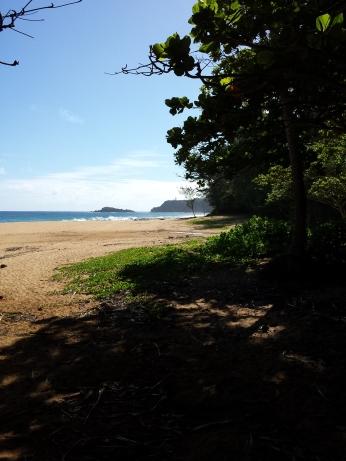 Secret Beach eastward