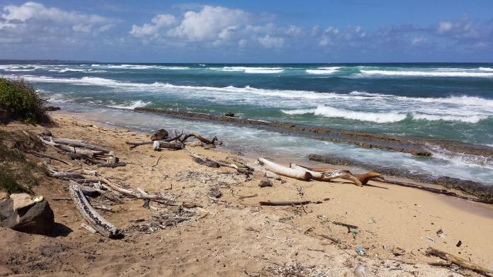 North End of Nukoli'i Beach