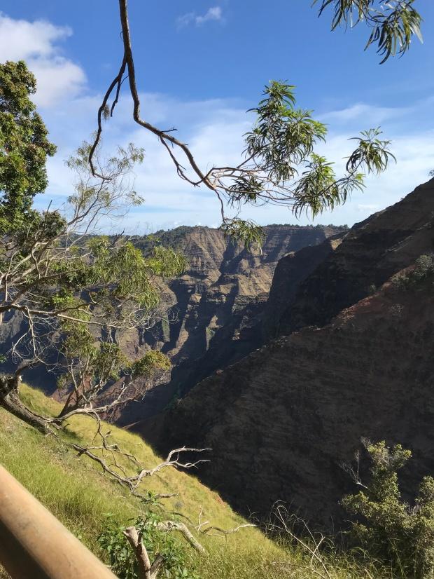 Cliff Trail Viewpoint