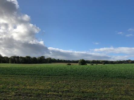 Through the fields on a crisp autumn day
