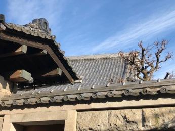 Shoren-ji rooflines