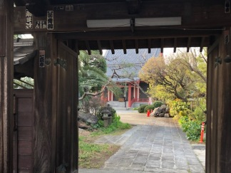 Peeking through the main gate at Tokoji Temple on our way.