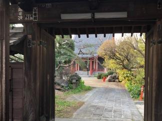 Peeking through the main gate at Tokoji Temple on our way.