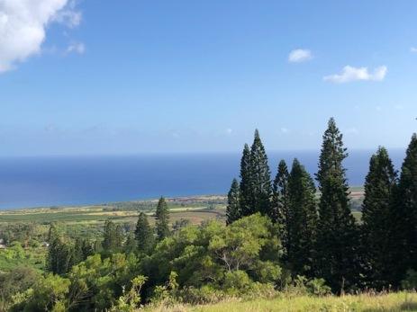 Kukuiolono view