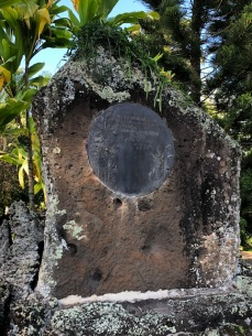The dedication to Walter McBryde is in another ancient tree mold. McBride donated the land for the park.