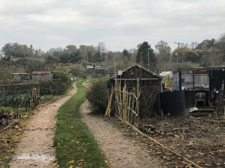 Village garden allotments ready for winter
