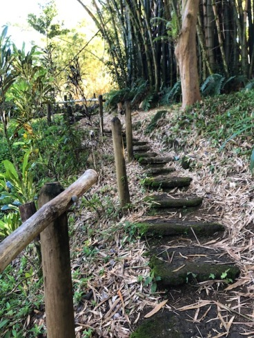 These steps up the Buddha statue could have come from Japan