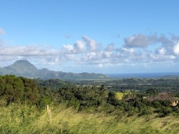 Hau'upu view from the Pavilion