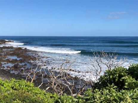The beach path provides view . . .