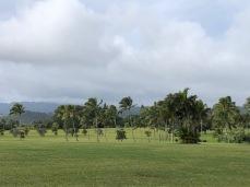 Rain threatened at Kukuiolono Park on Saturday